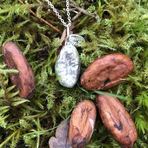 Chokladböna silversmycke